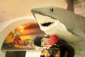 Leo Burdock Shark